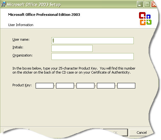 Microsoft.Office.2003.Serial keys (and they work) (download torrent